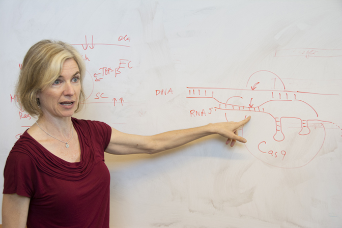 Jennifer Doudna and her lab